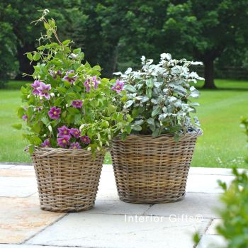 Rattan Wicker Basket Planter / Plant Pot Low/Woven Rim - Natural - FROM: