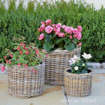 Rattan Wicker Basket Planter / Plant Pot  Round Straight Edge  - Natural