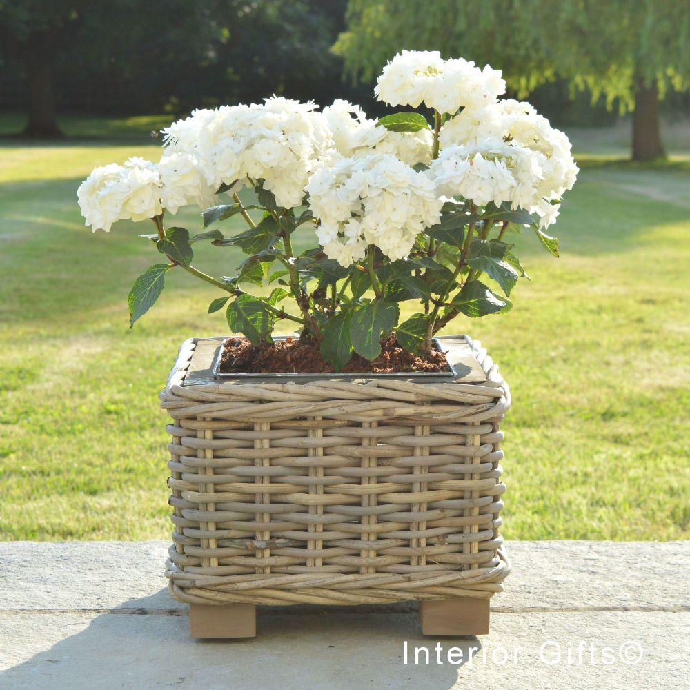 Rattan Wicker Basket Square Planter  with Metal Liner - Natural - 25 cm H