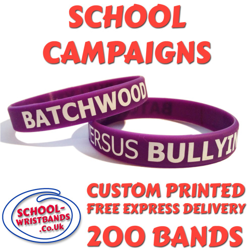 SCHOOL CAMPAIGN WRISTBANDS X 200 pcs