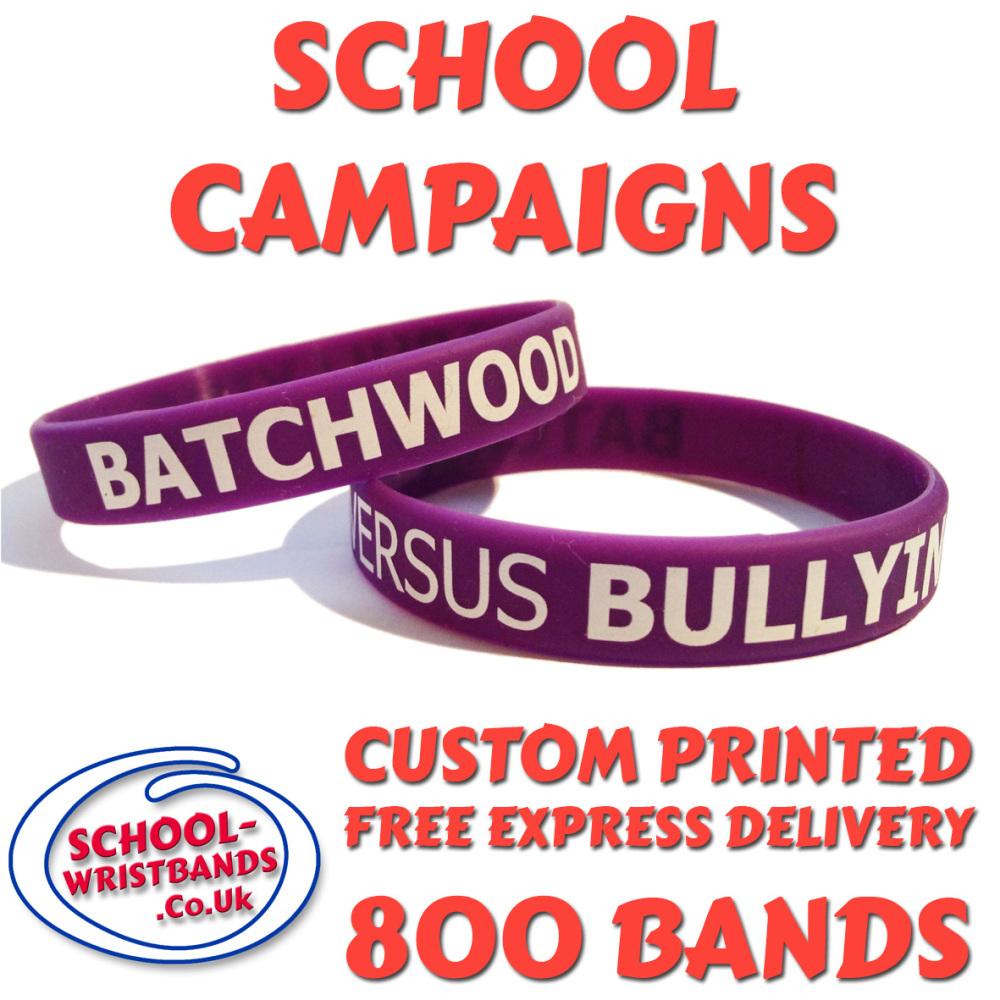 SCHOOL CAMPAIGN WRISTBANDS X 800 pcs