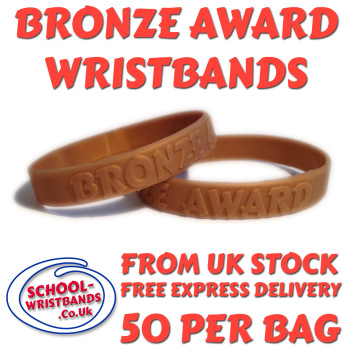 BRONZE AWARD - 25 MERITS - JUNIOR SIZE - Includes express delivery!