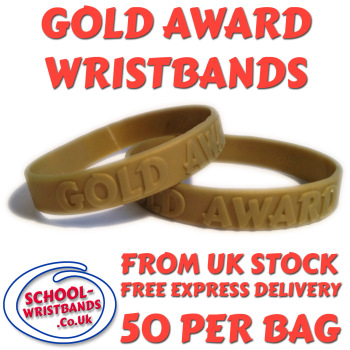 GOLD AWARD - 100 MERITS - JUNIOR SIZE - Includes express delivery!