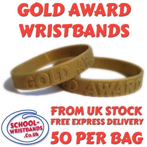 GOLD AWARD - JUNIOR SIZE - Includes express delivery and VAT!