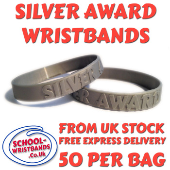 SILVER AWARD - 50 MERITS - JUNIOR SIZE - Includes express delivery!
