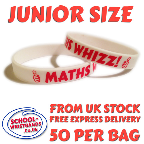 MATHS WHIZZ - JUNIOR SIZE - Includes express delivery and VAT!