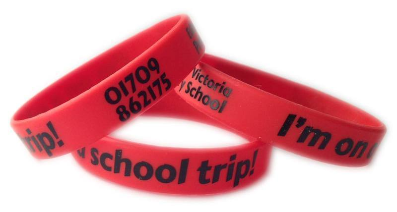School trip wristbands - www.School-wristbands.co.uk
