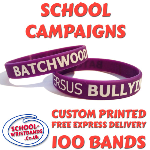 SCHOOL CAMPAIGN WRISTBANDS X 100 pcs