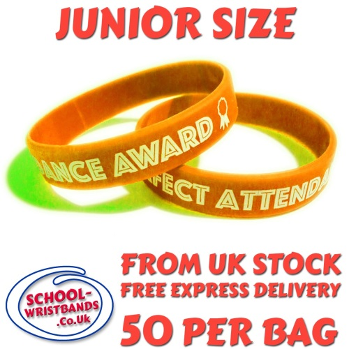 ATTENDANCE - JUNIOR SIZE - ORANGE - Includes express delivery!