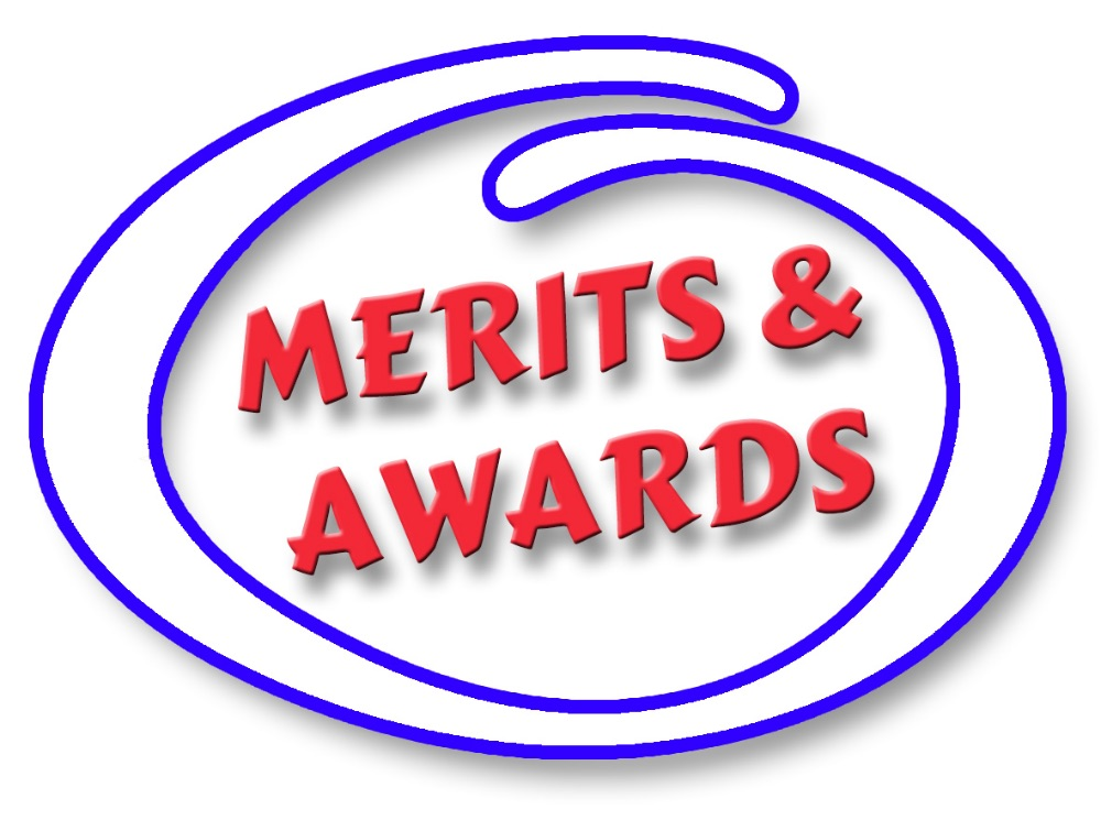 3. MERIT & AWARDS WRISTBANDS