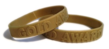 GOLD-AWARD-SCHOOL-WRISTBANDS