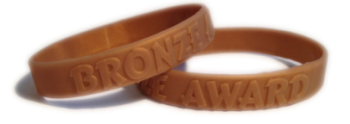 BRONZE SCHOOL MERIT WRISTBAND