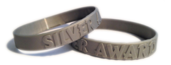 SILVER SCHOOL MERIT WRISTBANDS