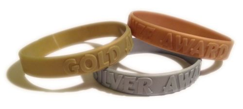 Gold, Silver & Bronze Awards - School Rewards Wristbands