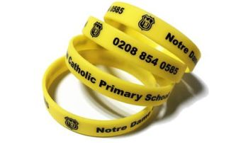 Notre Dame - Custom Printed School Trip Wristbands by School-Wristbands.co.