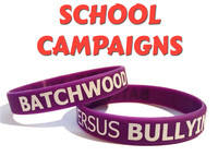 SCHOOL CAMPAIGNS - Click here.