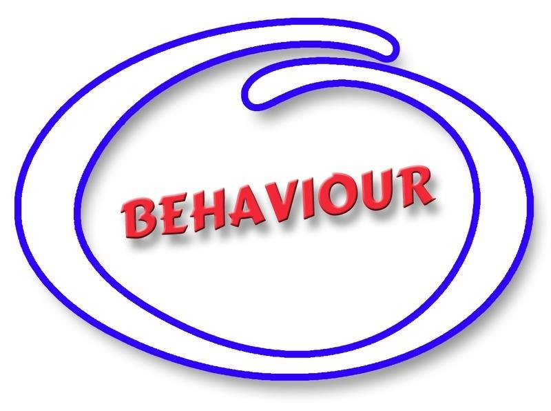 USES-BEHAVIOUR-SCHOOL-WRISTBANDS