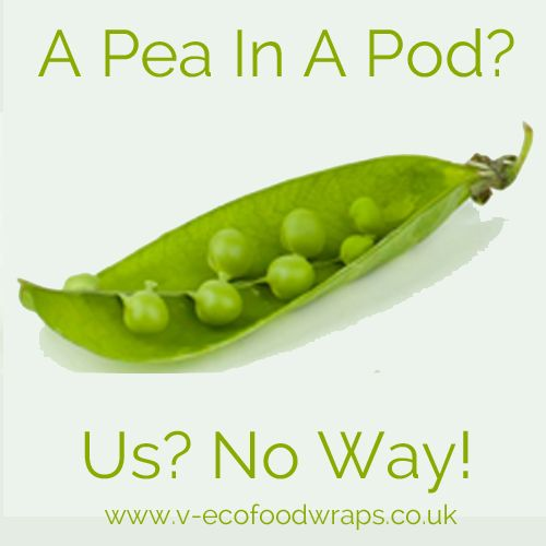a pea in a pod no way 2 copy