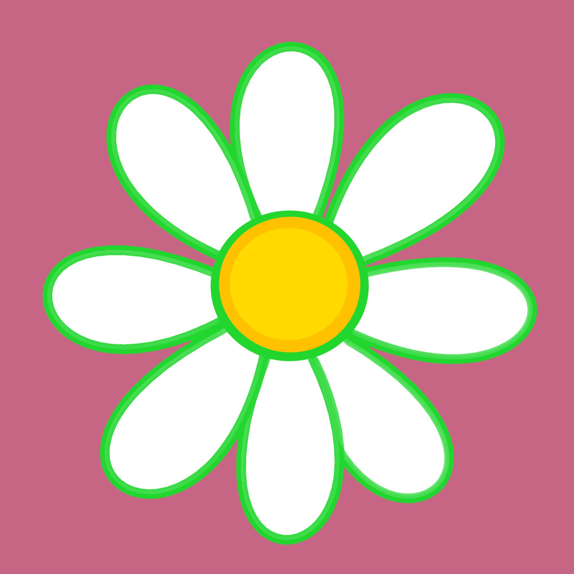 V-Eco Pamper Packs Daisy Logo