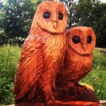 neithart_owls