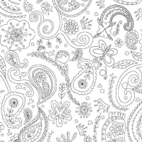 Michael Miller Fabric - Color Me Princess Paisley