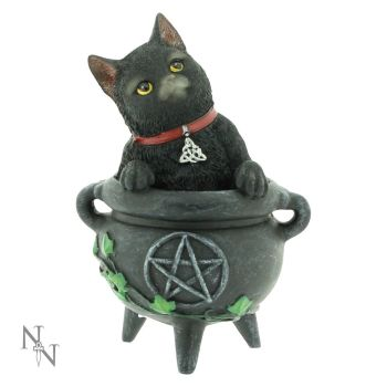 Cats of the Coven - Smudge