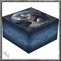 Mirror Trinket Box  - Protector