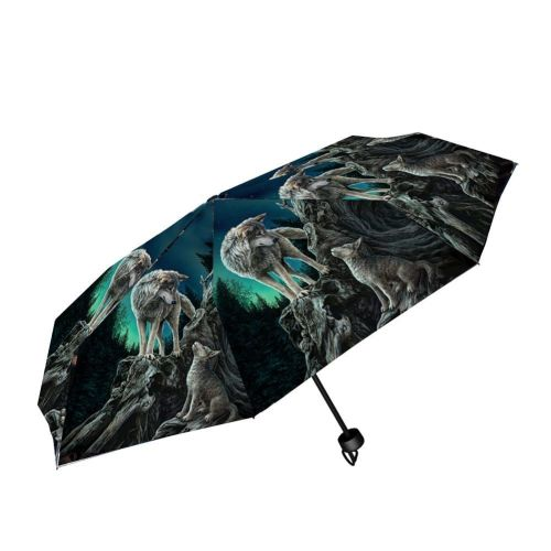 Guidance Compact/Telescopic Umbrella - Lisa Parker