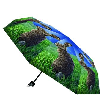 Solstice Compact/Telescopic Umbrella - Lisa Parker