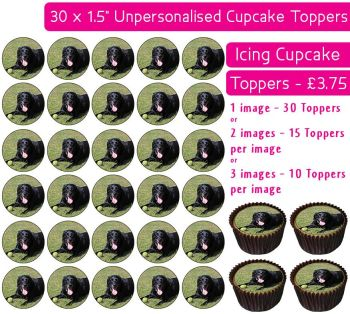 Your Own Pet / Animal Personalised Photo - 30 Icing Cupcake Toppers