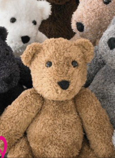 TRUFFLE BEAR KIT LARGE