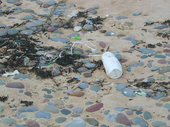 Litter, litter, everywhere - who knows where it will end up?