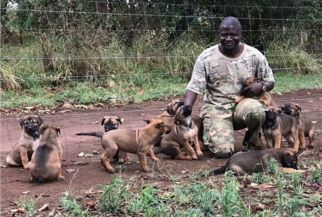 These are the latest members of the K9 anti-poaching team