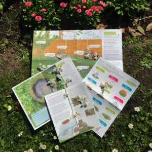 Donate to the PTES Garden Wildlife Appeal and receive this kit