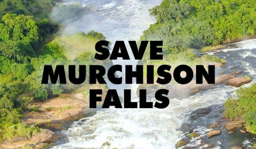 Save the Murchison Falls