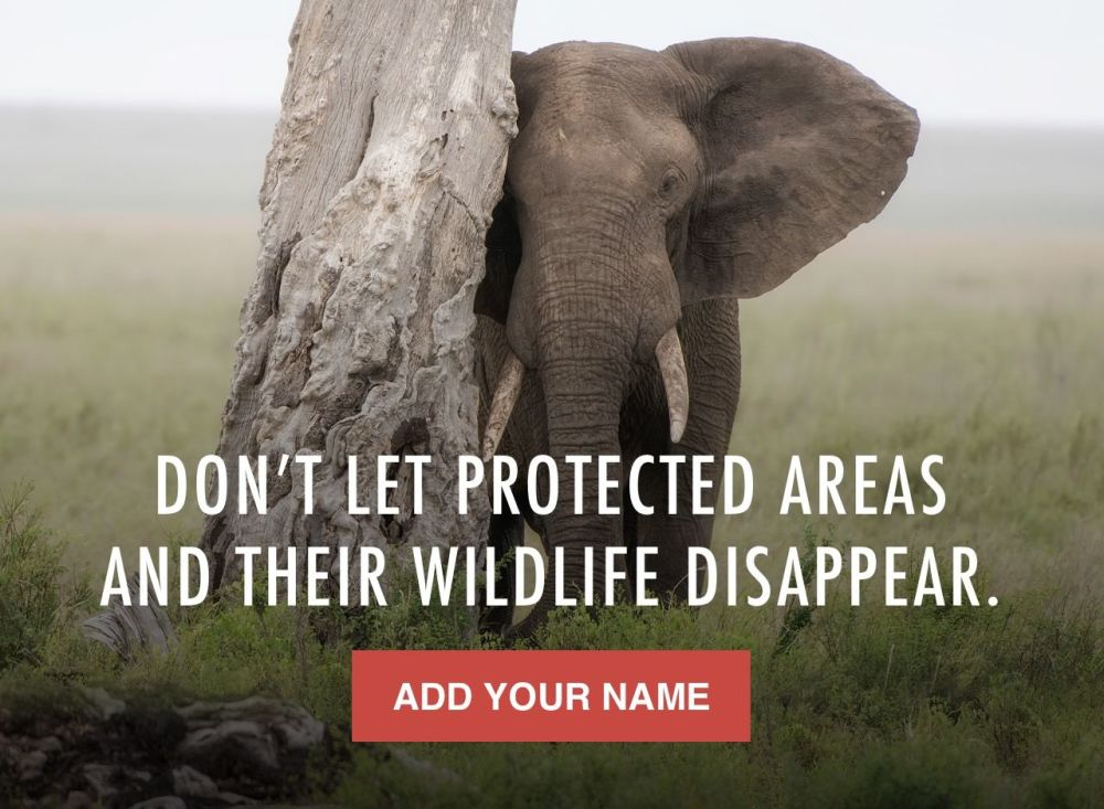 Please sign and share - Thank you