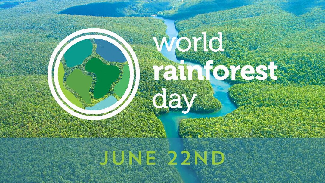Visit the World Rainforest Day's website