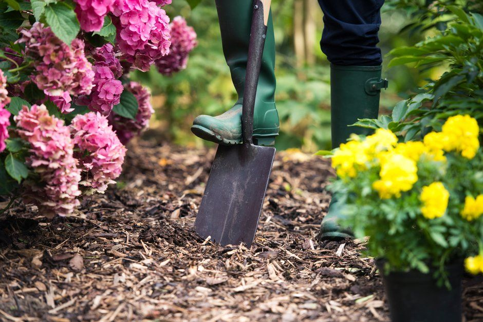 Find out more about the different benefits gardening can bring