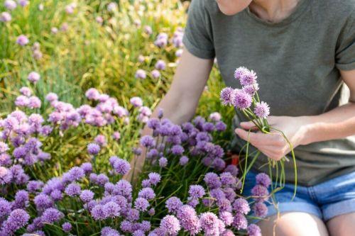 Gardening brings lots of benefits