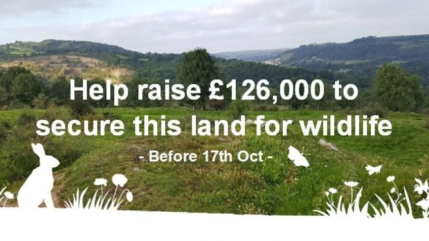Help to raise £126,000 to secure this land for wildlife