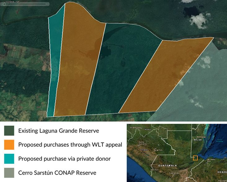 The orange areas are those proposed purchases through the World Land Trust appeal