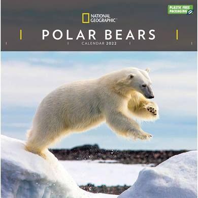 For polar bear lovers, how about a National Geographic, Polar Bears Calendar 2022?