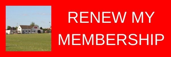 2020 renew