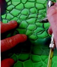 Dragon Skin Stencils