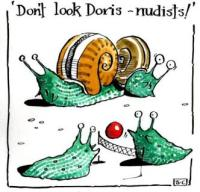 Don't Look Doris