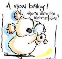 A New Baby - Where Are The Instructions