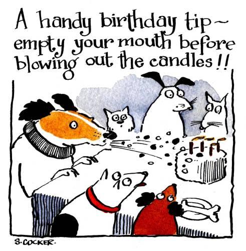 Birthday Advice