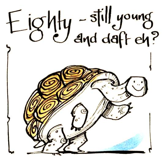 80th Birthday card. Cartoon tortoise with caption 80-still young & daft Eh?