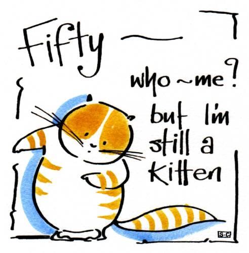 50 Still A Kitten