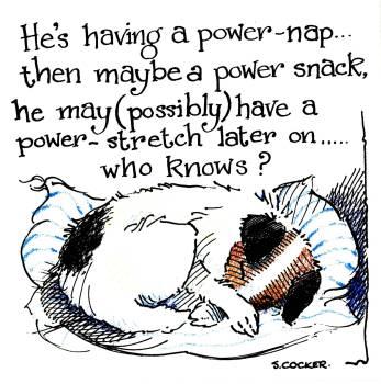 A Power Nap